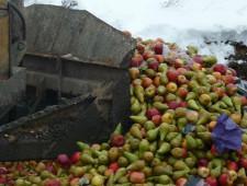 В Астраханской области уничтожили санкционную продукцию