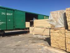 АО «ФГК» в 2 раза увеличило объем перевозок лесных грузов