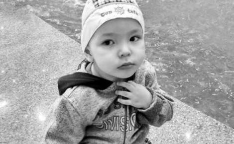 Тяжелобольной трехлетний Владик, о помощи которому просили Путина, умер - Экономика и общество