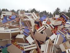 В Курганской области мобильной группой изъято  свыше 20 тонн польских яблок