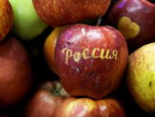 В Польше рассказали о восстановлении экспорта яблок в РФ благодаря Белоруссии - Обзор прессы - TKS.RU