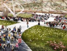 Посетители парка «Зарядье» вытоптали, выкопали и унесли 10 тысяч растений - Экономика и общество - TKS.RU