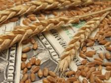 Минсельхоз определится с мерами по стабилизации цен на зерно в октябре - Экономика и общество - TKS.RU