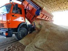 Пользуясь чужими документами, мошенник стащил 53 тонны зерна с предприятия на Ставрополье - Криминал - TKS.RU