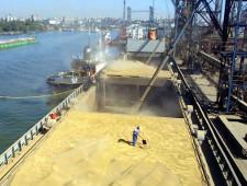 С начала 2017 г. из Кубани экспортировали 346 тыс тонн зерна