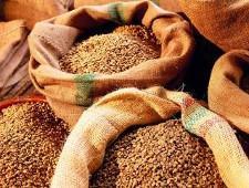 Экспортные отгрузки зерна и продуктов его переработки из Орловской и Курской областей